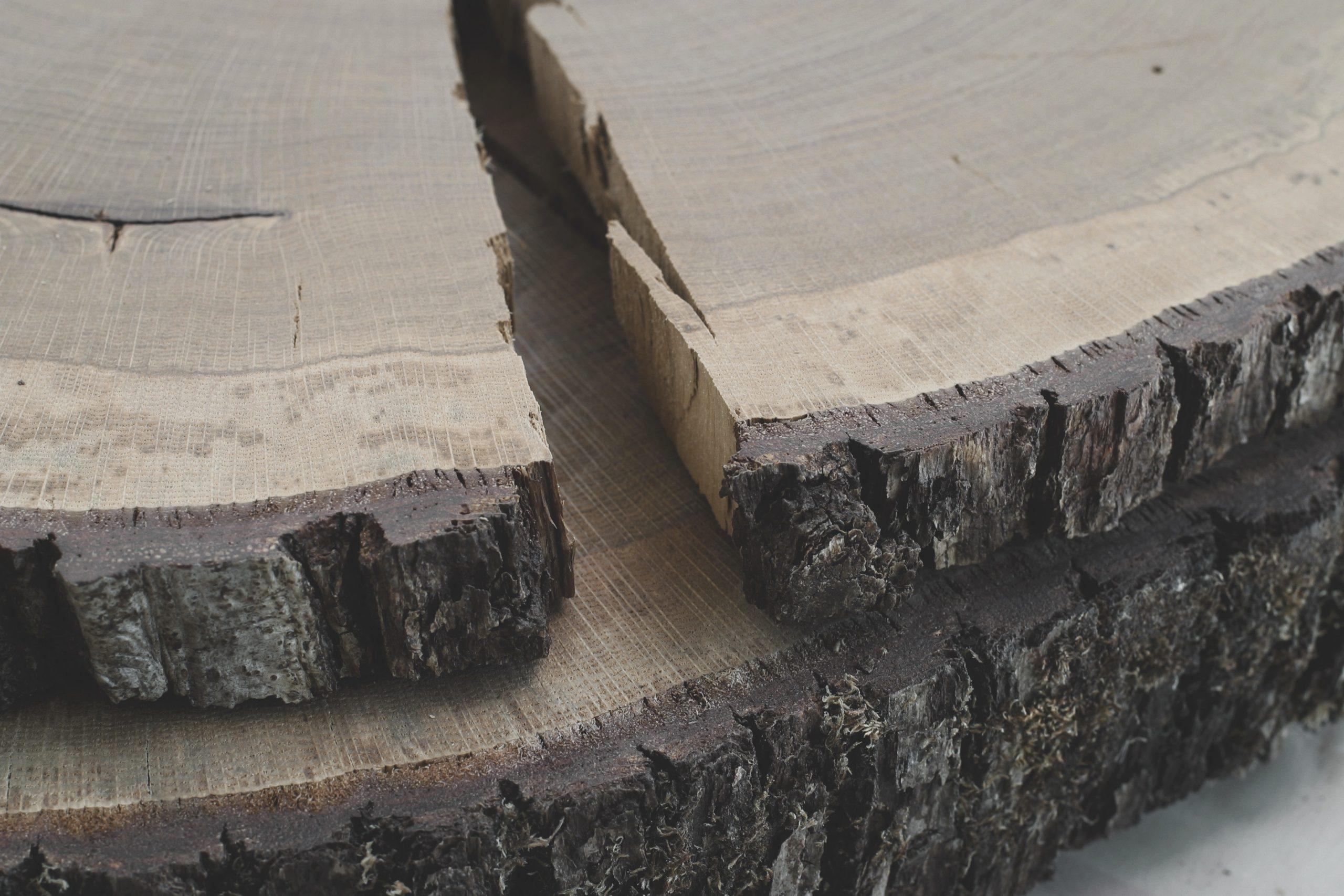 Holz - Schwund durch Trocknung